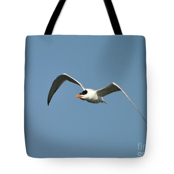 Tern Flight Tote Bag by Al Powell Photography USA