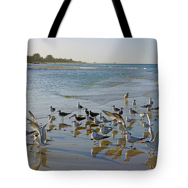Terns And Seagulls On The Beach In Naples, Fl Tote Bag