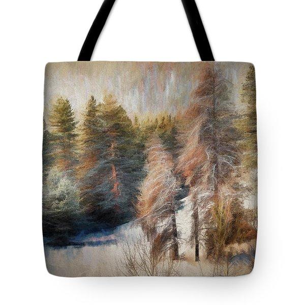 Terra Incognita Tote Bag