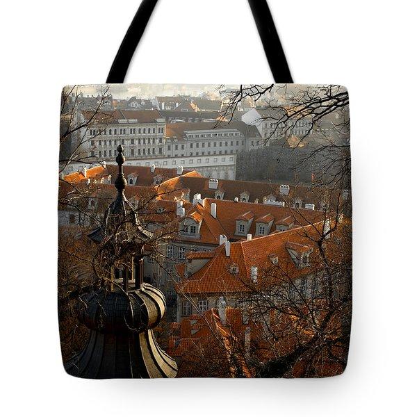 Terracotta Crowns Tote Bag