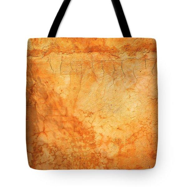 Terracotta Wall Tote Bag