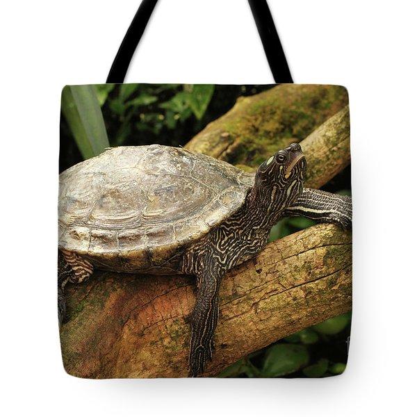 Tess The Map Turtle #3 Tote Bag
