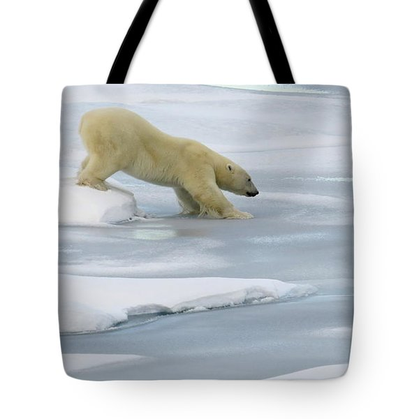 Testing The Ice Tote Bag
