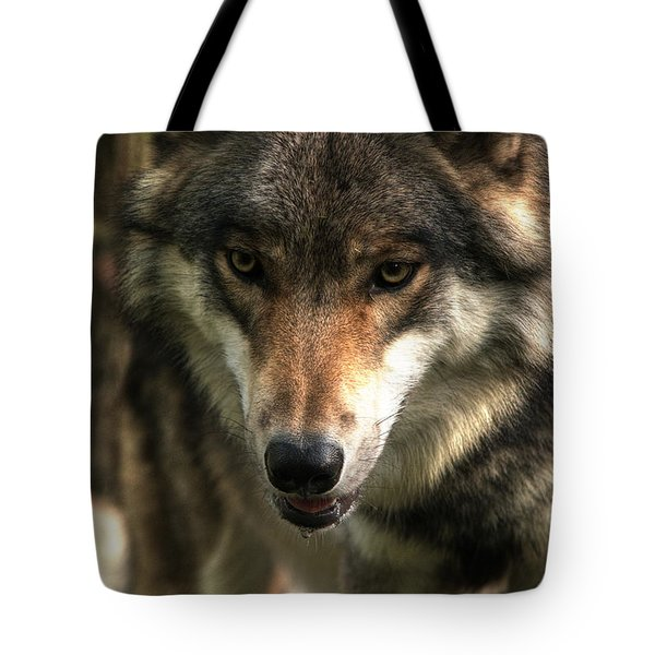 Teton Dribbling Tote Bag by William Fields