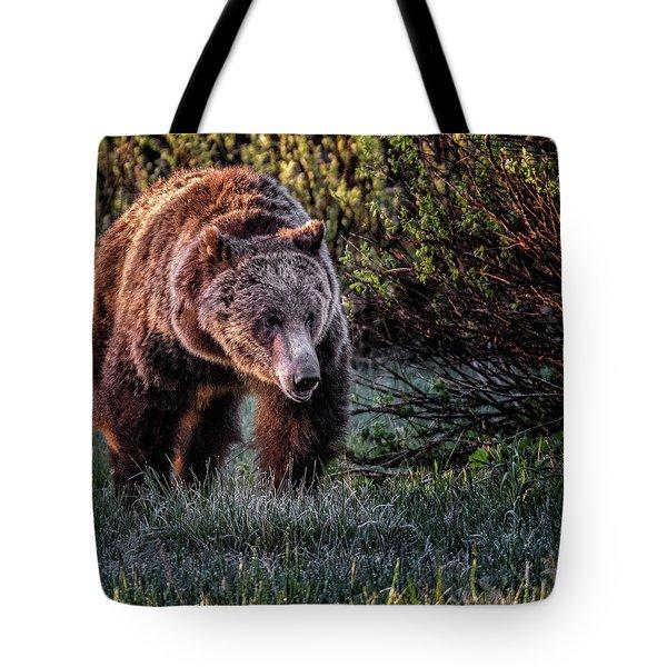 Teton Grizzly Tote Bag