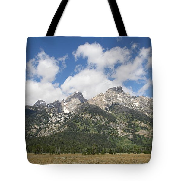 Teton View Tote Bag by Diane Bohna
