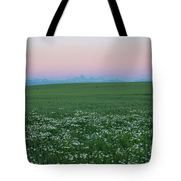 Tetons With Daisies Tote Bag