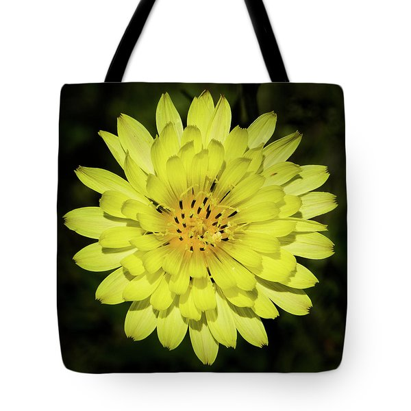Texas Dandelion Tote Bag
