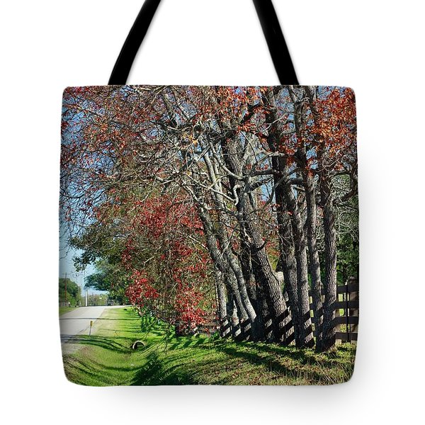 Tote Bag featuring the photograph Texas Fall by Lori Mellen-Pagliaro