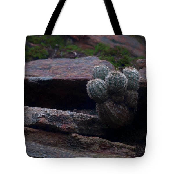 Tote Bag featuring the photograph Texas Hill Country Cactus  by Travis Burgess