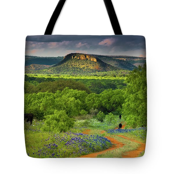 Texas Hill Country Ranch Road Tote Bag by Darryl Dalton