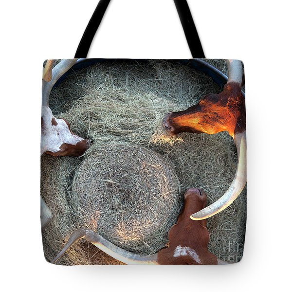 Texas Longhorn Cattle, Ft. Worth Stockyards Tote Bag
