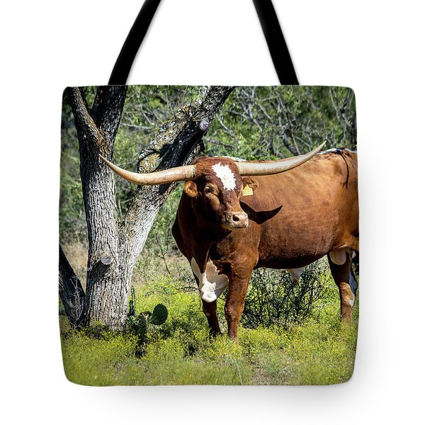 Tote Bag featuring the photograph Texas Longhorn Steer by David Morefield