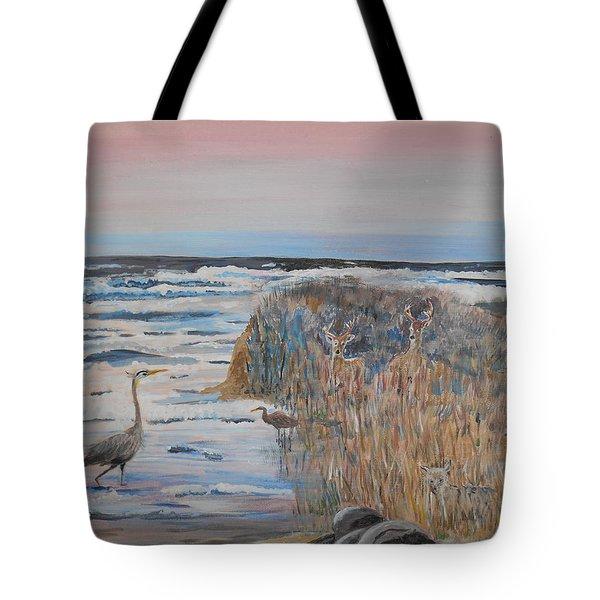 Texas - Padre Island Tote Bag