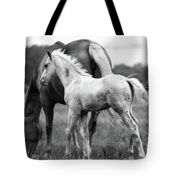 Tote Bag featuring the photograph Texas Ranch  by Vincent Bonafede