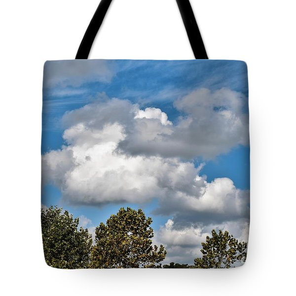 Tote Bag featuring the photograph Texas - Reach For The Sky.   by Ray Shrewsberry