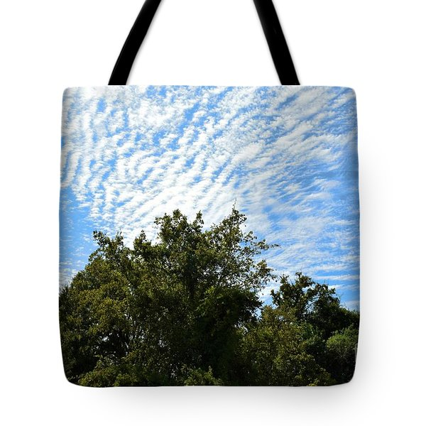 Tote Bag featuring the photograph Texas Scene - Midday  by Ray Shrewsberry
