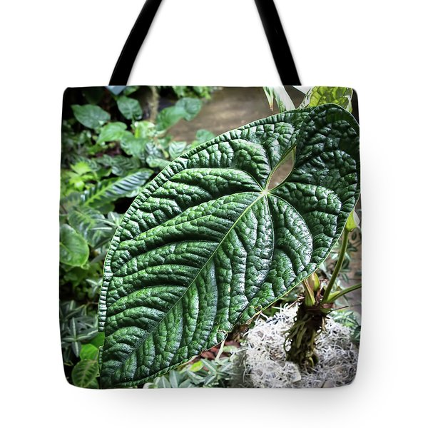 Texture Of A Leaf Tote Bag