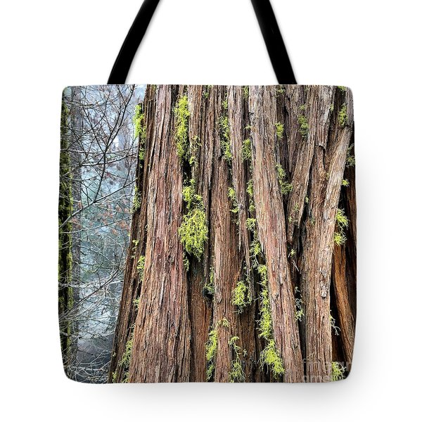 Tote Bag featuring the photograph Texturing by Paul Foutz