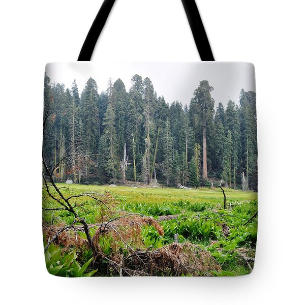 Tote Bag featuring the photograph Tharps Log Meadow by Kyle Hanson