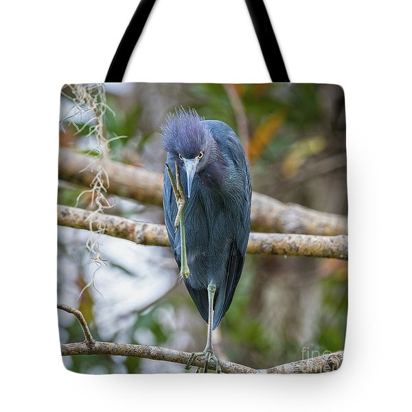 That Feels Great - Little Blue Heron Tote Bag