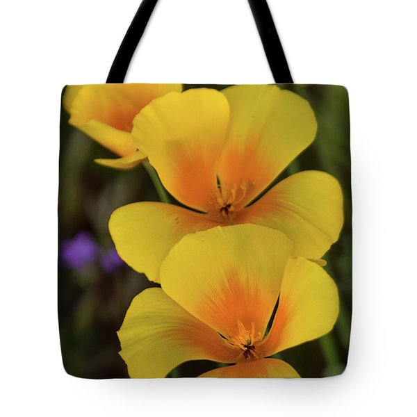 Tote Bag featuring the photograph That Golden Spring Glow  by Saija Lehtonen