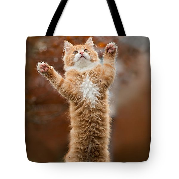 That Mouse Was This Big -red Haired Kitten Tote Bag