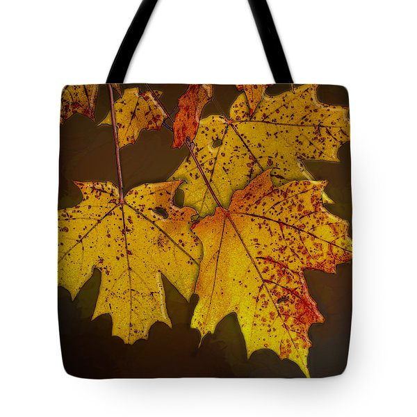 Tote Bag featuring the photograph That Time Of Year by Paul Wear