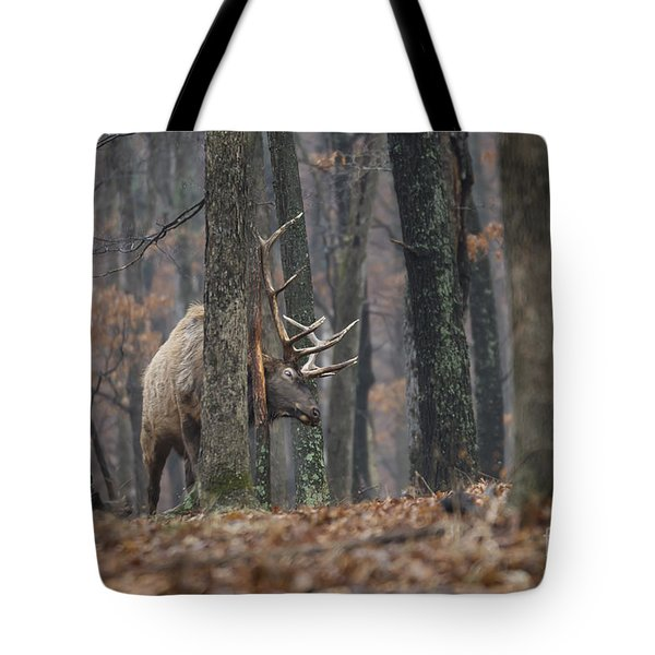 That's The Spot Tote Bag by Andrea Silies