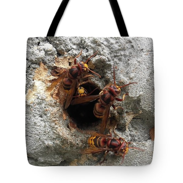 The 4 Hornets Tote Bag