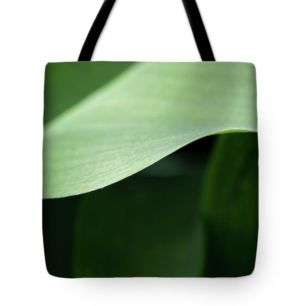 The Allure Of A Curve - Tote Bag