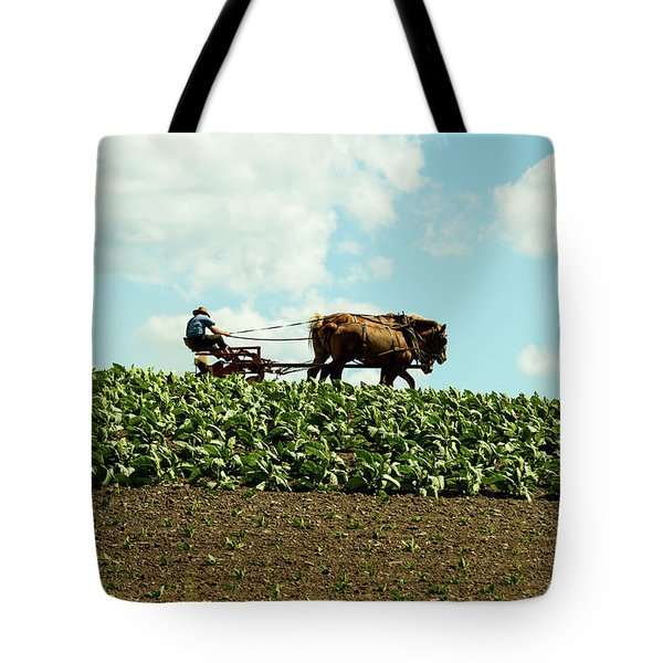 The Amish Farmer With Horses In Tobacco Field Tote Bag