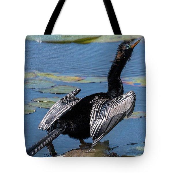 The Bird, Anhinga Tote Bag