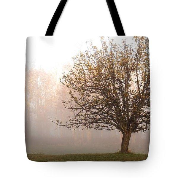 The Apple Tree Tote Bag