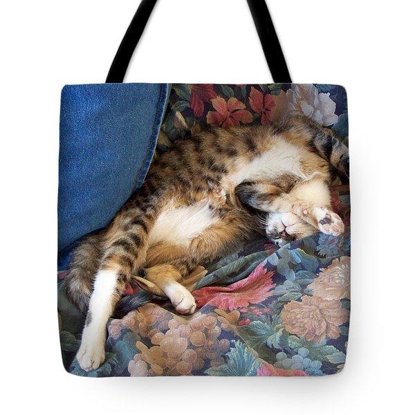 The Art Of Sleeping Tote Bag