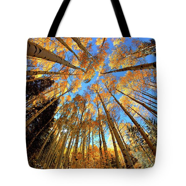Tote Bag featuring the photograph The Aspens Above - Colorful Colorado - Fall by Jason Politte