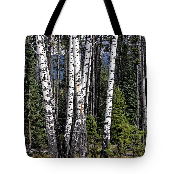 Tote Bag featuring the photograph The Aspens by John Gilbert