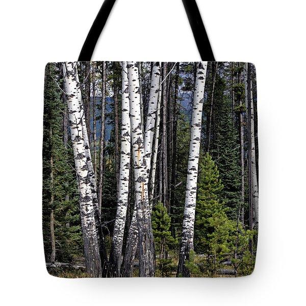 The Aspens Tote Bag