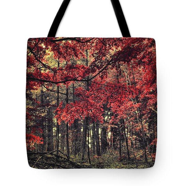 The Autumn Colors Tote Bag