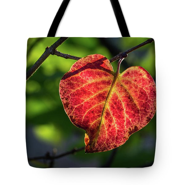 Tote Bag featuring the photograph The Autumn Heart by Bill Pevlor