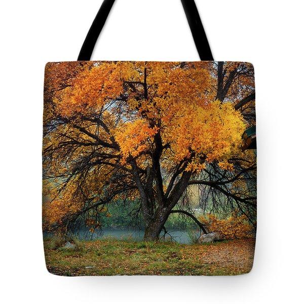 The Autumn Tree Tote Bag