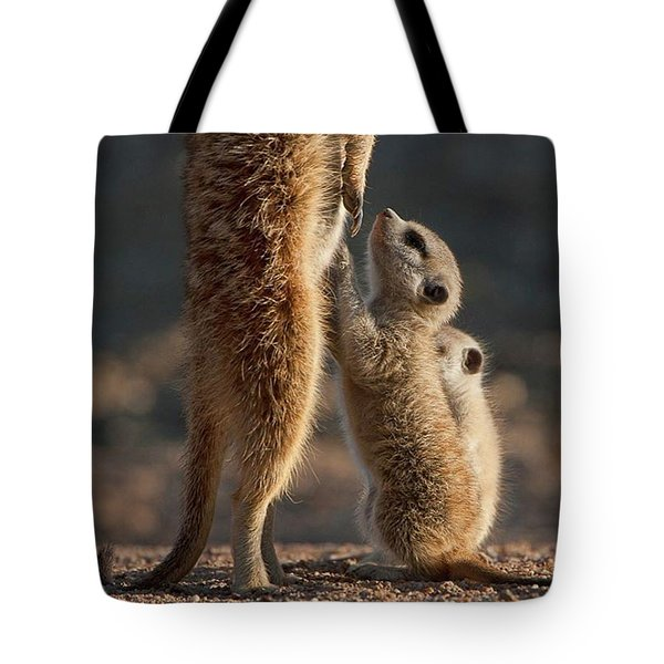 The Baby Is Hungry Tote Bag by Happy Home Artistry