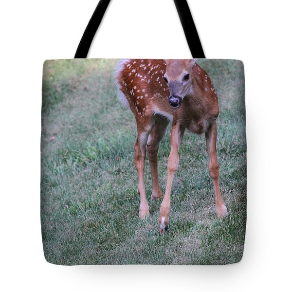 The Bambi Stance Tote Bag by Karol Livote