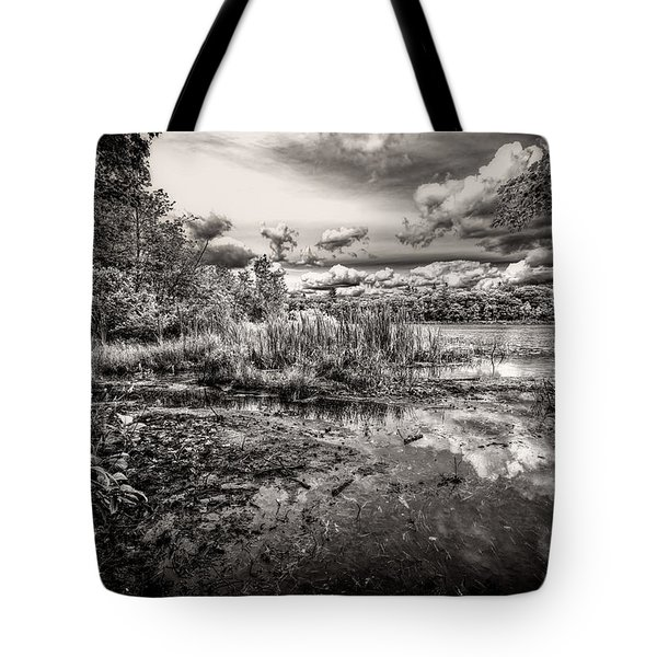The Basin And Snails Tote Bag by Bob Orsillo