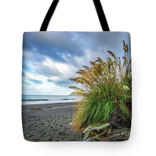 The Beach At Brookings Tote Bag