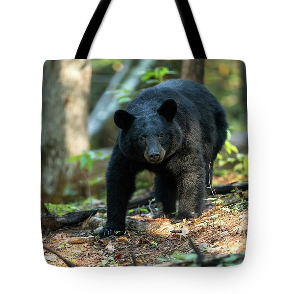 Tote Bag featuring the photograph The Bear by Everet Regal