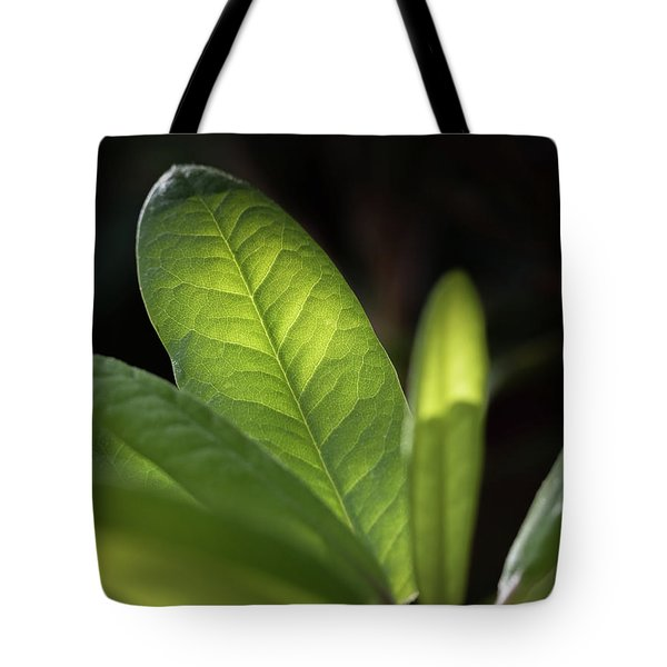 The Beauty Of A Leaf - Tote Bag