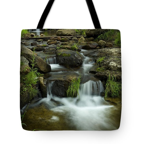 The Beauty Of Nature Tote Bag by Sue Cullumber