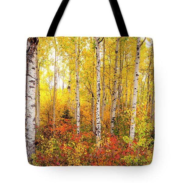 Tote Bag featuring the photograph The Beauty Of The Autumn Forest by Tim Reaves