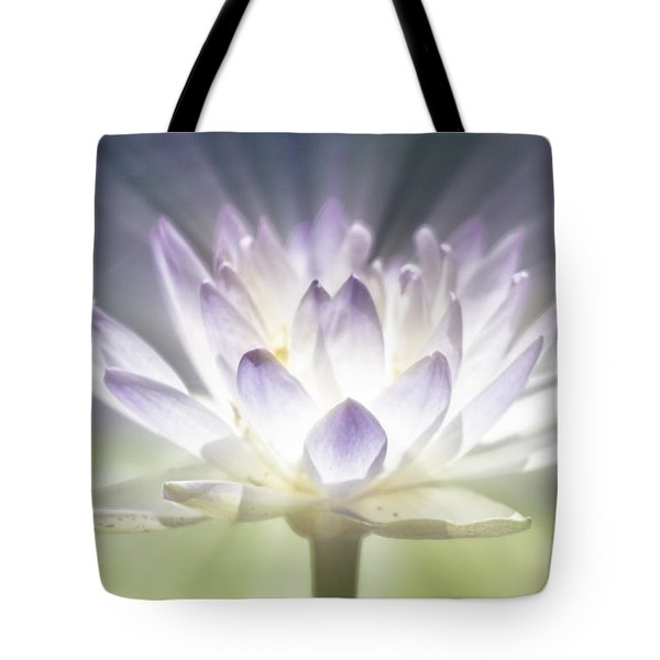 The Beauty Within Tote Bag by Douglas Barnard